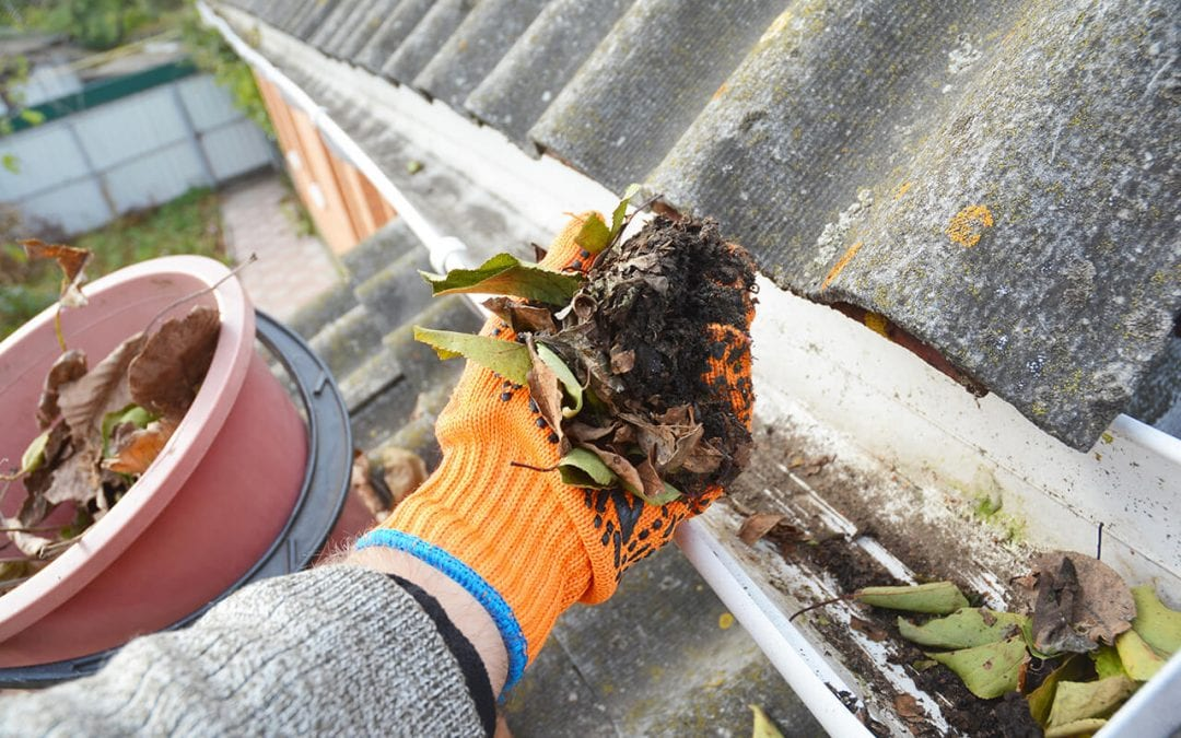 learning how to clean the gutters is essential for home maintenance
