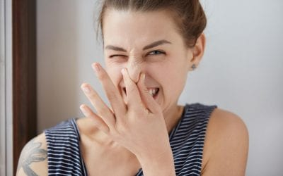 7 Odors in the Home and What They Mean
